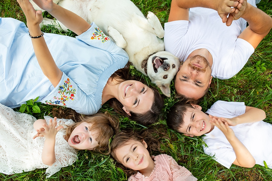 Happy beautiful big family together mother, father, children and dog lying on the grass top view